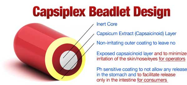 graphic-beadlet-design